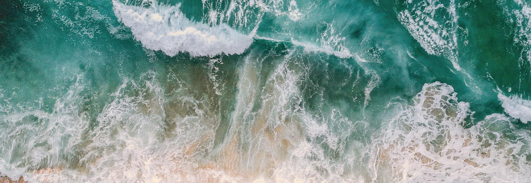 Newsletter Medio Ambiente Septiembre 2019